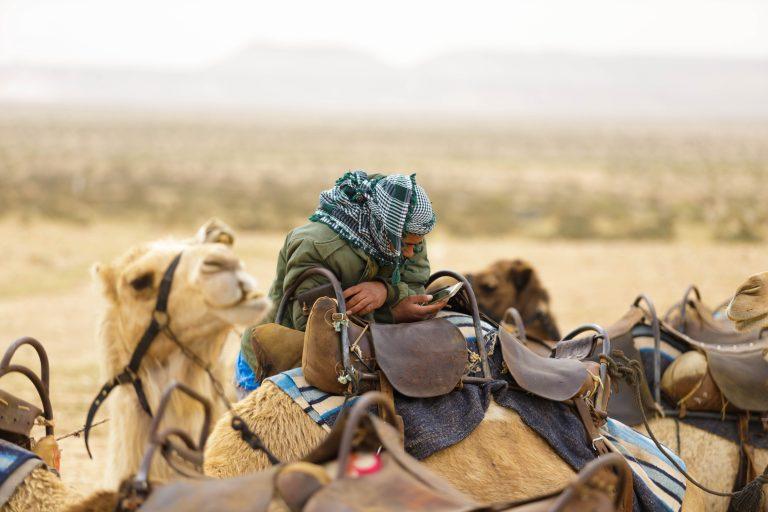 Bedouin, Camel, Desert, גמל, בדואי, טלפון
